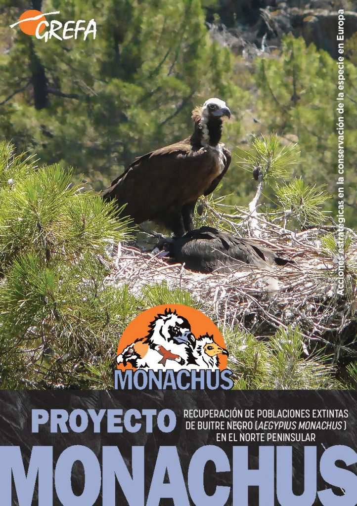 https://proyectomonachus.grefa.org/wp-content/uploads/2017/06/cuadernillo_proyecto_monachus-page-001-1-722x1024.jpg