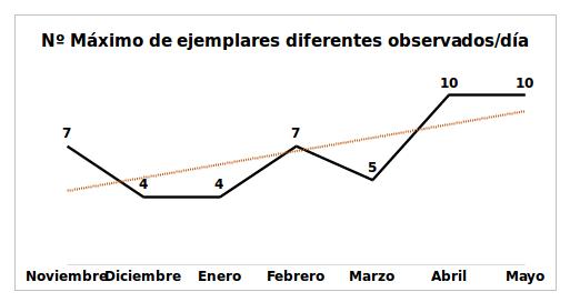 Gráfica 4: Número máximo de buitres negros exógenos diferentes observados en un mismo día alimentándose en el PAE (n=10 en abril y mayo).