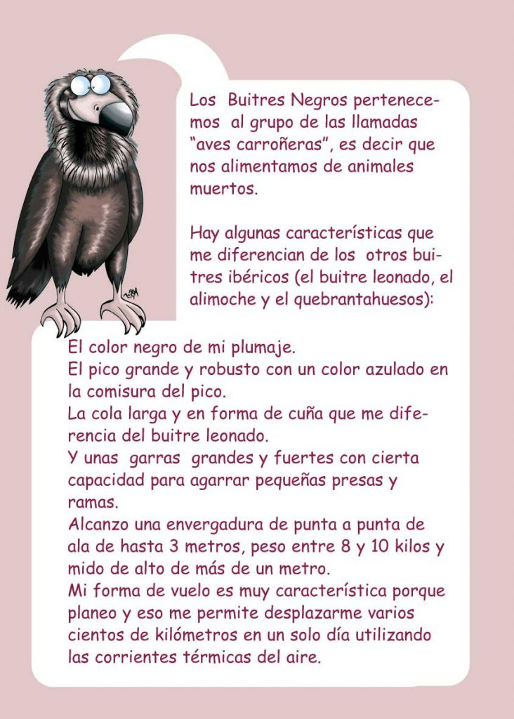 http://proyectomonachus.grefa.org/wp-content/uploads/2017/07/06-Buitre-negro-page-004-732x1024.jpg
