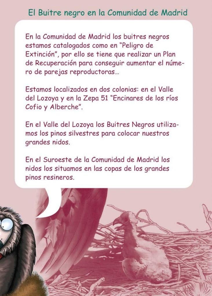 http://proyectomonachus.grefa.org/wp-content/uploads/2017/07/06-Buitre-negro-page-011-732x1024.jpg
