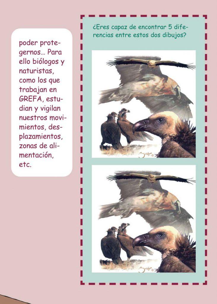https://proyectomonachus.grefa.org/wp-content/uploads/2017/07/06-Buitre-negro-page-013-732x1024.jpg