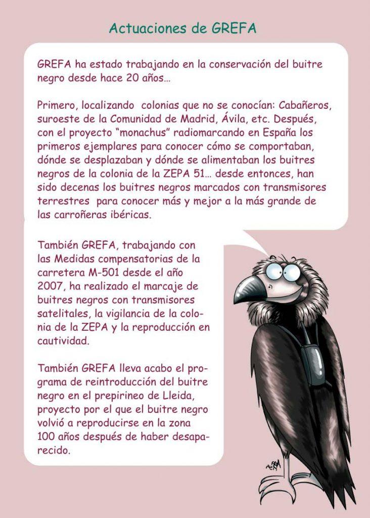 https://proyectomonachus.grefa.org/wp-content/uploads/2017/07/06-Buitre-negro-page-014-732x1024.jpg