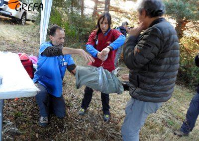 Los veterinarios de GREFA pesan a uno de los buitres negros que van a ser marcados con emisor.