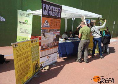 Stand del Proyecto Monachus en la explanada del frontón de Huerta de Arriba (Burgos).