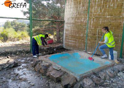 Voluntarios limpian de restos de carroña el jaulón de aclimatación de buitres negros de Huerta de Arriba (Burgos).