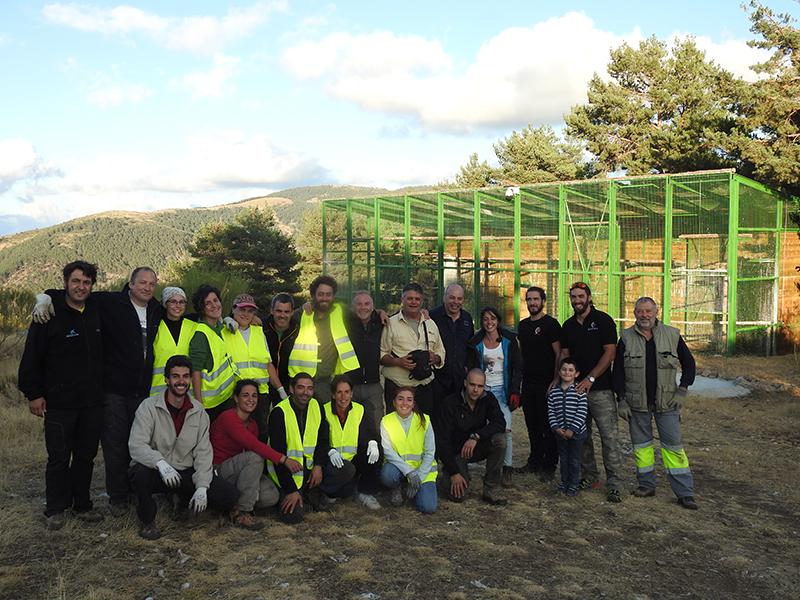 Voluntarios y trabajadores de GREFA delante del jaulón de aclimatación de buitres negros en Huerta de Arriba (Burgos).