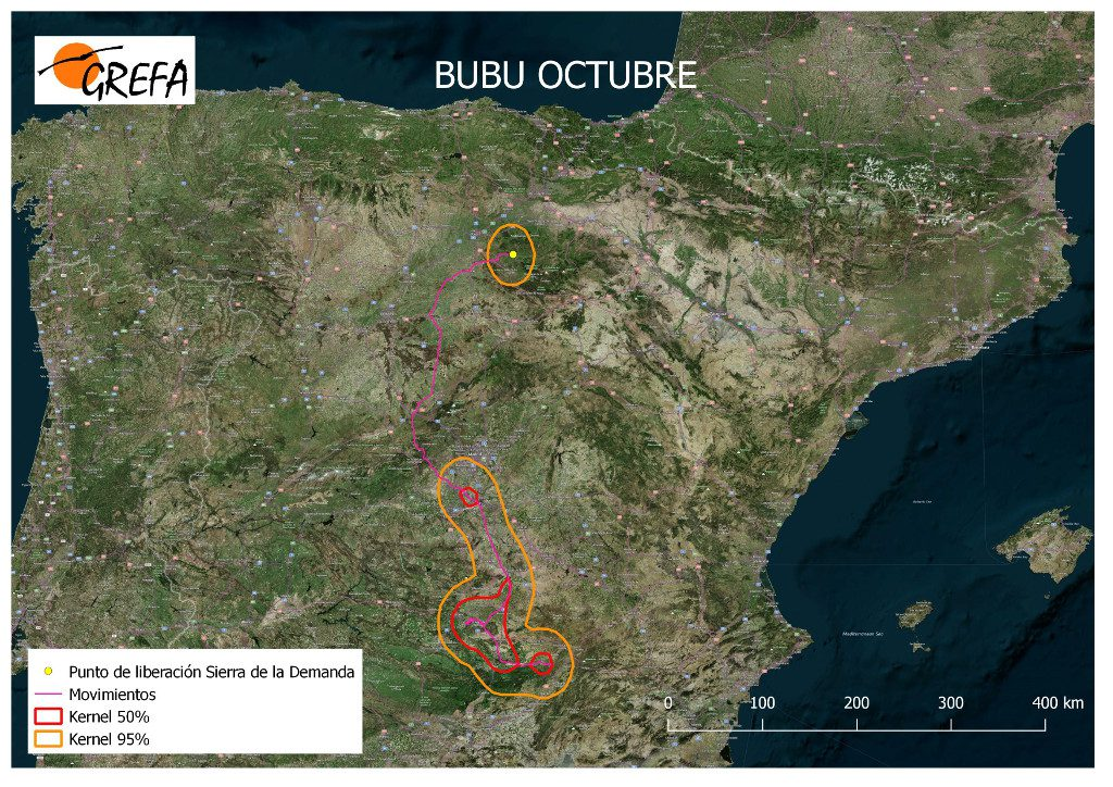 Figura 12. Movimientos (morado) y área vital (rojo) y de campeo (naranja) de Bubu durante el mes de octubre.