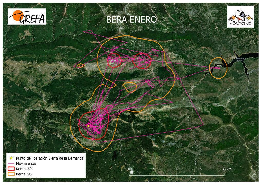 Mapa 3. Movimientos (morado) y área vital (rojo) y de campeo (naranja) de Bera durante el mes de enero.