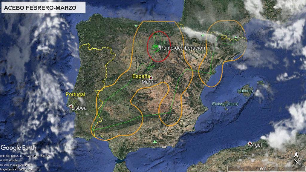 Mapa 3: Movimientos de Acebo durante los meses de febrero y marzo. La línea amarilla delimita el área de campeo (Kernel 95%) y la roja el área vital (Kernel 50%).