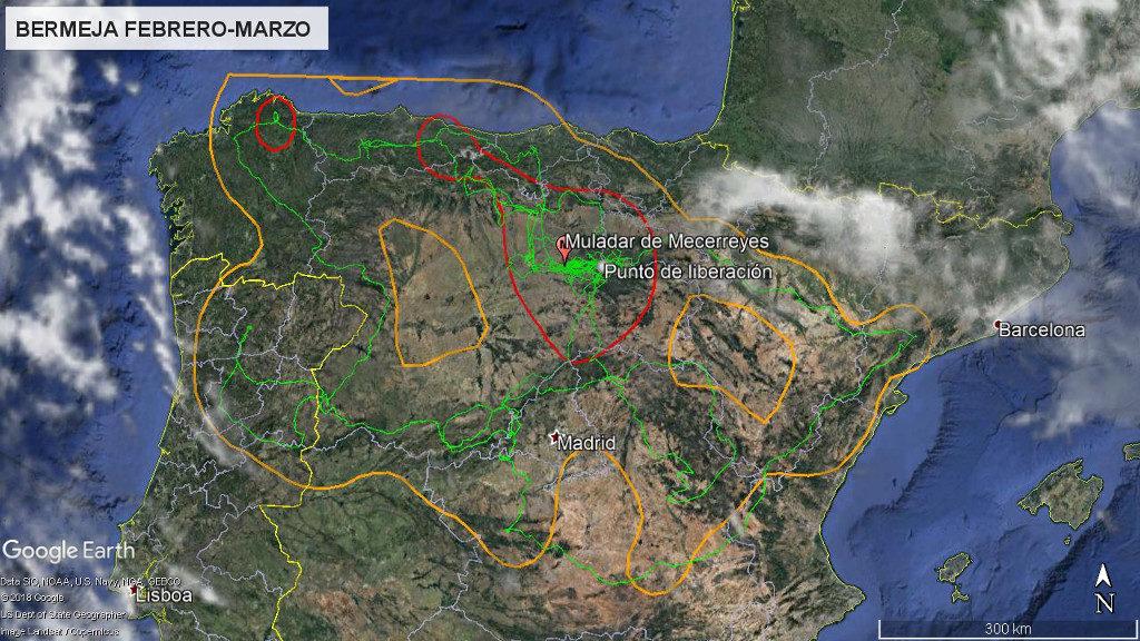 Mapa 5: Movimientos de Bermeja durante los meses de febrero y marzo. La línea amarilla delimita el área de campeo (Kernel 95%) y la roja el área vital (Kernel 50%).