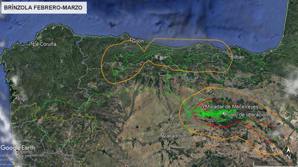 Mapa 14: Movimientos de Brínzola durante los meses de febrero y marzo. La línea amarilla delimita el área de campeo (Kernel 95%) y la roja el área vital (Kernel 50%).