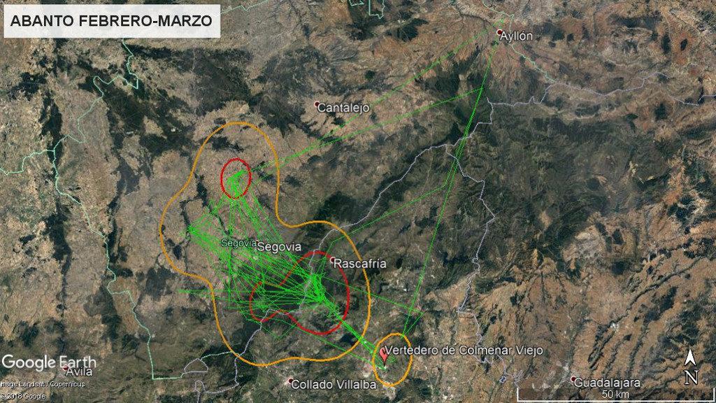 Mapa 16: Movimientos de Abanto durante los meses de febrero y marzo. La línea amarilla delimita el área de campeo (Kernel 95%) y la roja el área vital (Kernel 50%).