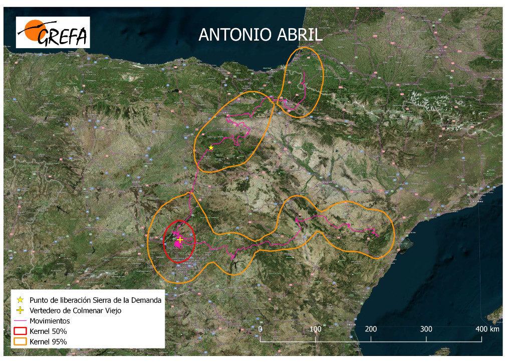 Mapa 18. Movimientos de Antonio durante el mes de abril. La línea amarilla delimita el área de campeo (Kernel 95%) y la roja el área vital (Kernel 50%).