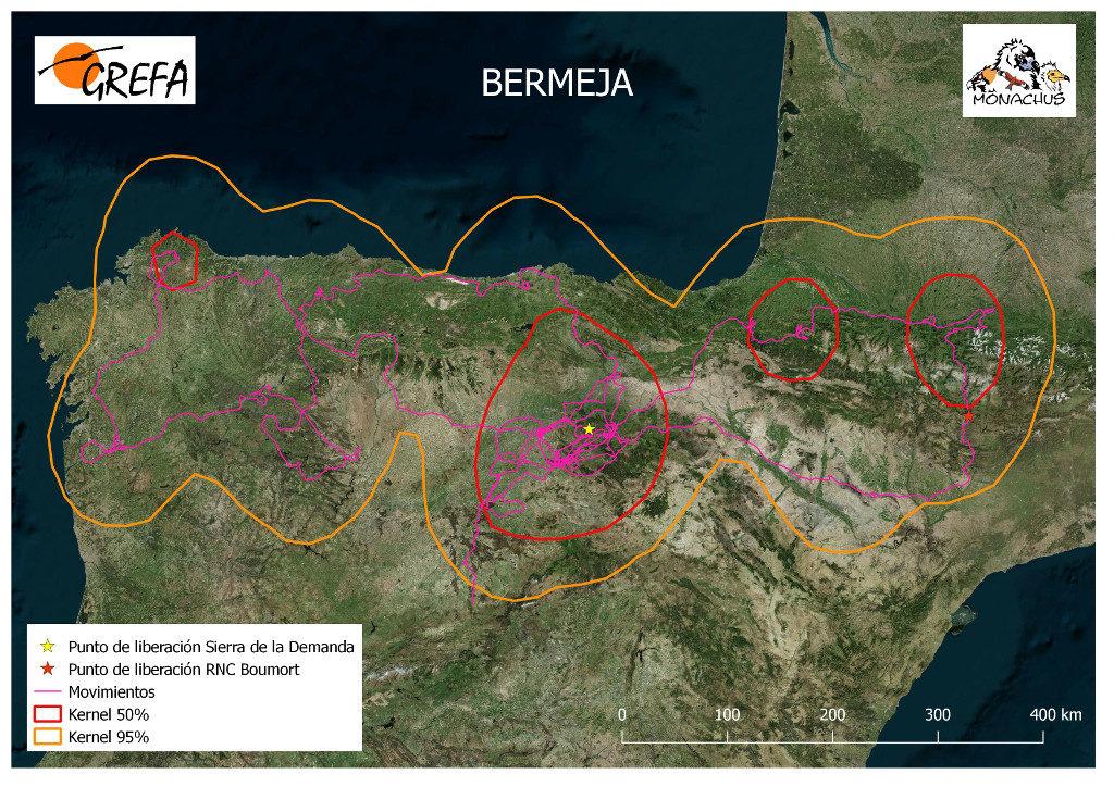 Mapa 9. Movimientos de Bermeja durante el mes de junio. La línea amarilla delimita el área de campeo (Kernel 95%) y la roja el área vital (Kernel 50%).