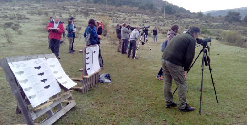 Figura 5: Decenas de observadores acudieron a participar en la III Liberación de buitres negros el pasado 6 de octubre.