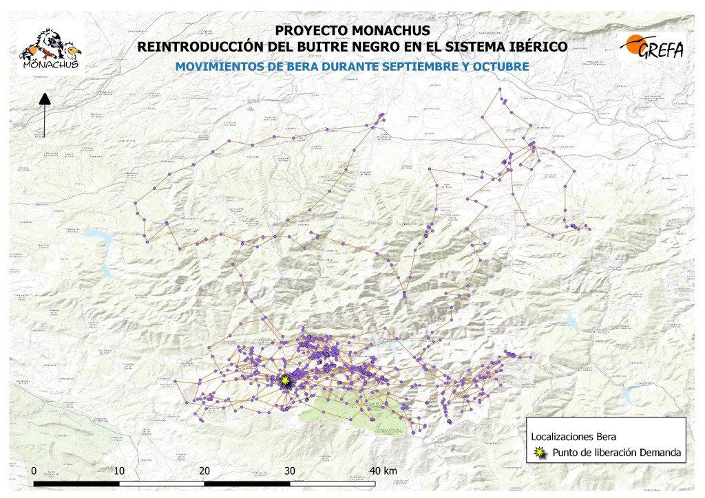 Mapa 1. Movimientos de Bera durante los meses de septiembre y octubre.