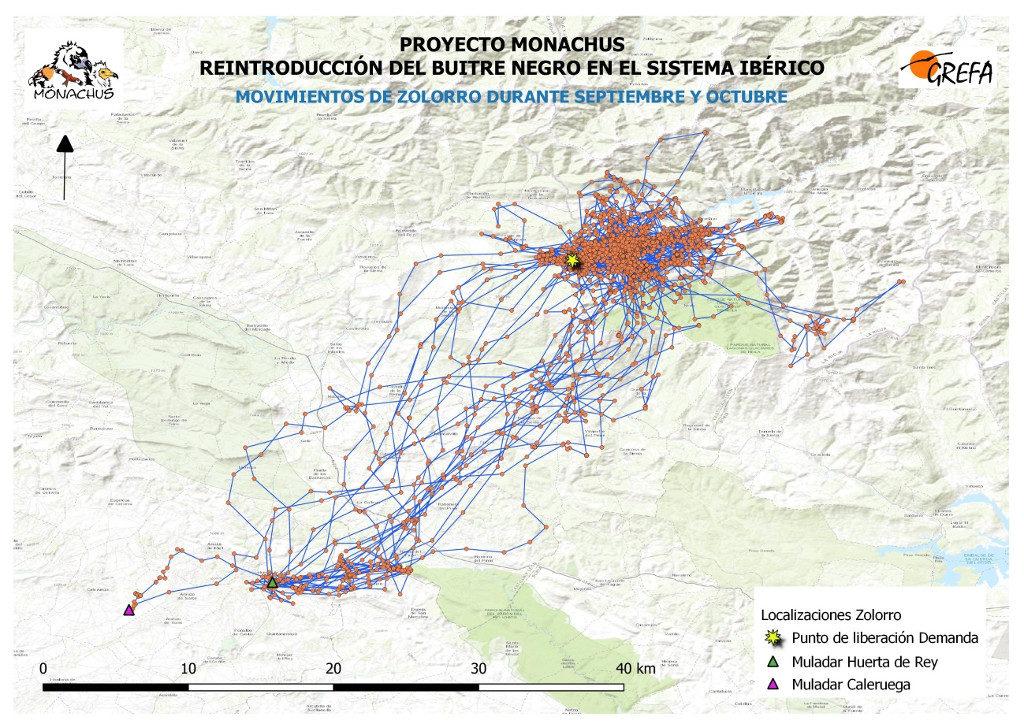 Mapa 3. Movimientos de Zolorro durante septiembre y octubre.