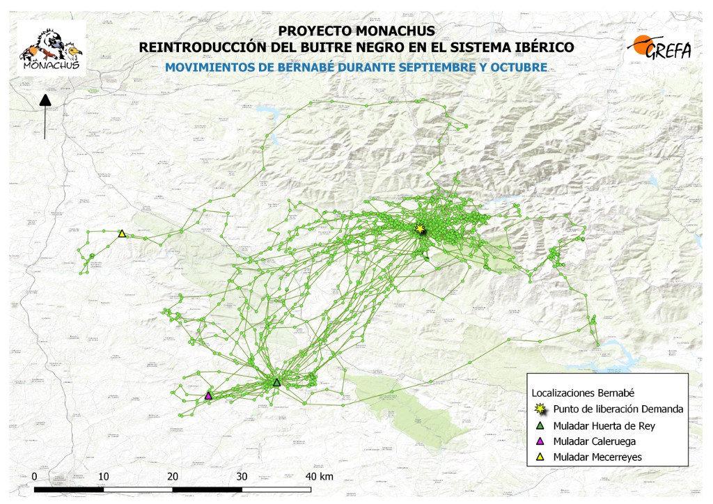 Mapa 8. Movimientos de Bernabé durante los meses de septiembre y octubre.