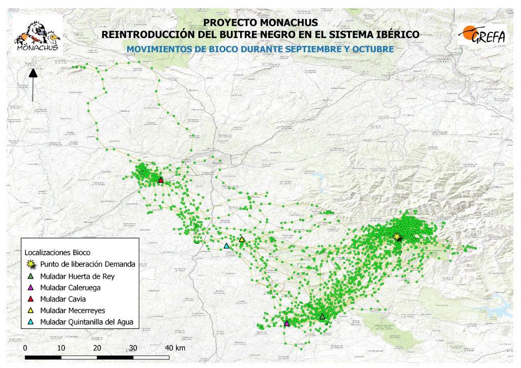 Mapa 10. Movimientos de Bioco durante los meses de septiembre y octubre.