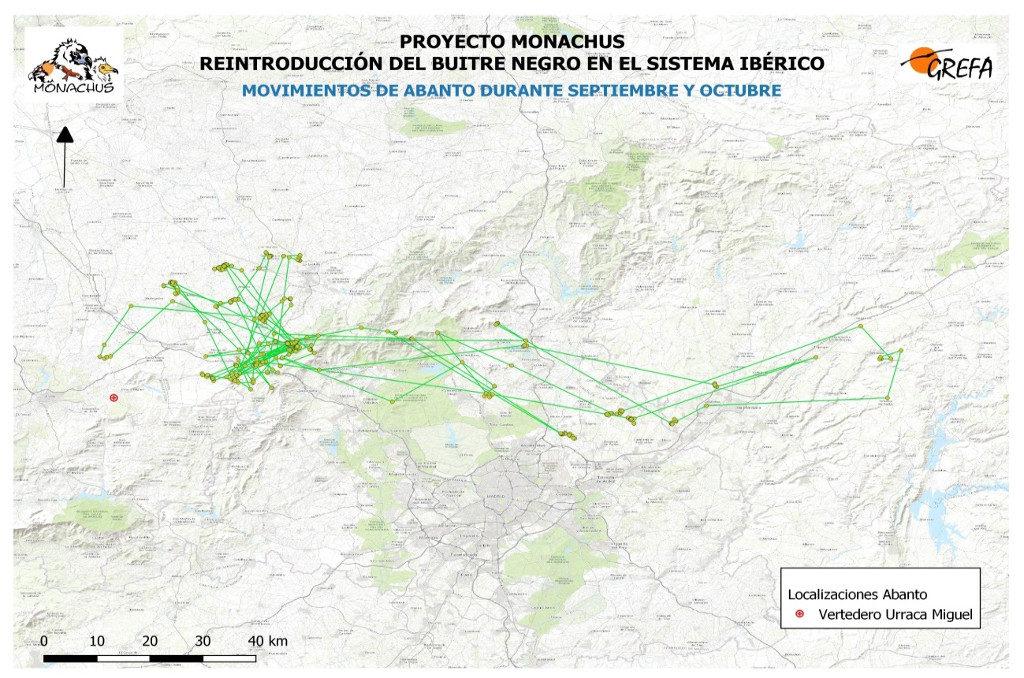 Mapa 14. Movimientos de Abanto durante los meses de septiembre y octubre.