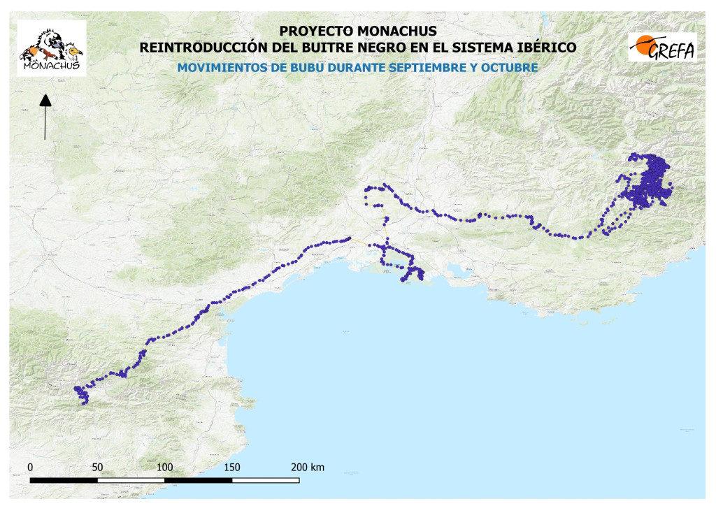 Mapa 15. Movimientos de Bubu durante los meses de septiembre y octubre.