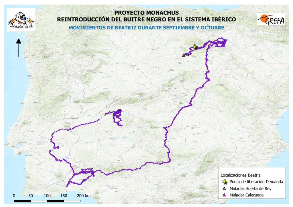 Mapa 16. Movimientos de Beatriz durante los meses de septiembre y octubre.