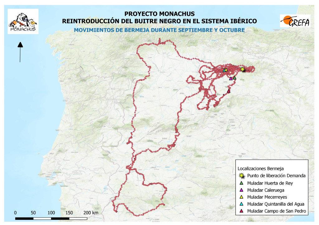 Mapa 9. Movimientos de Bermeja durante los meses de septiembre y octubre.