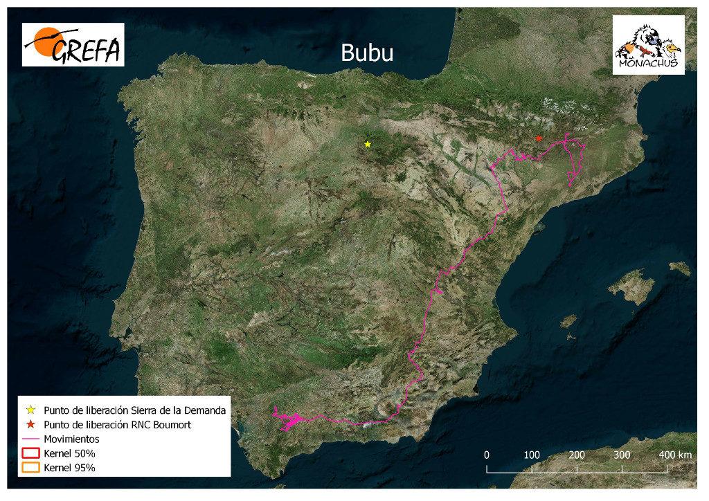 Mapa 19. Movimientos de Bubu durante los meses de noviembre y diciembre.
