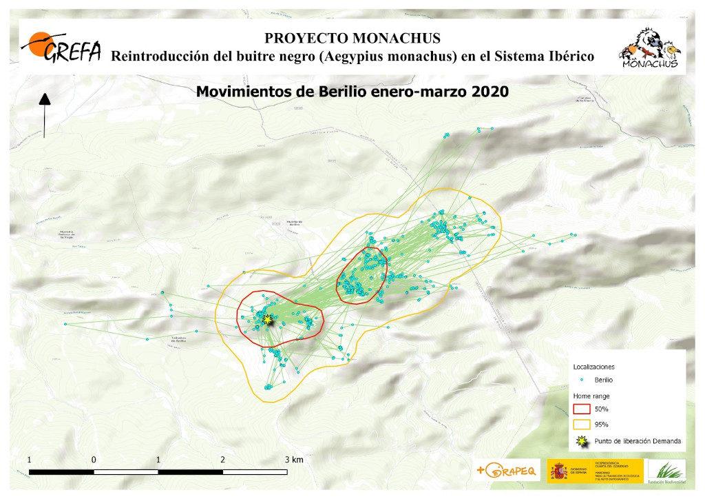 Mapa 2. Movimientos de Berilio durante los meses enero-marzo.
