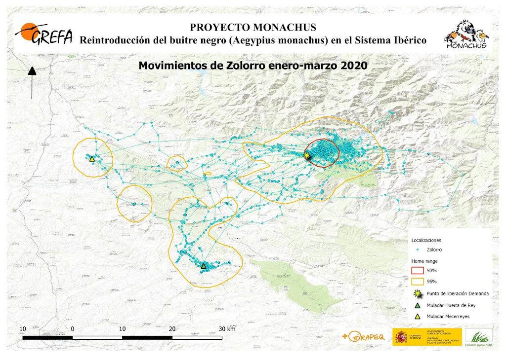 Mapa 3. Movimientos de Zolorro durante enero-marzo.
