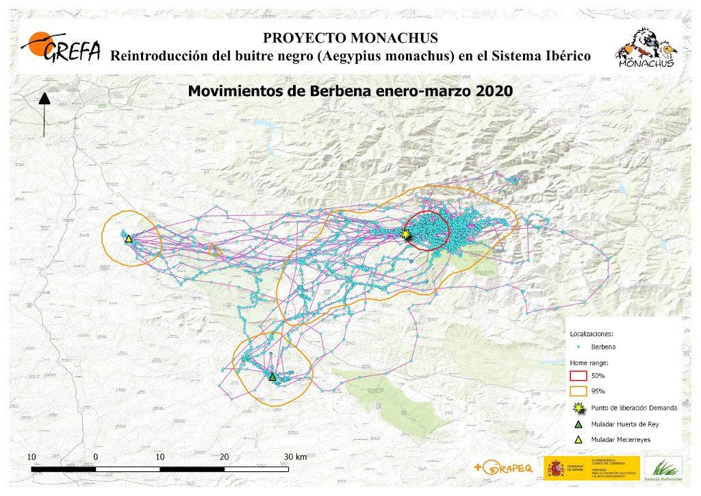 Mapa 4. Movimientos de Berbena durante enero-marzo.