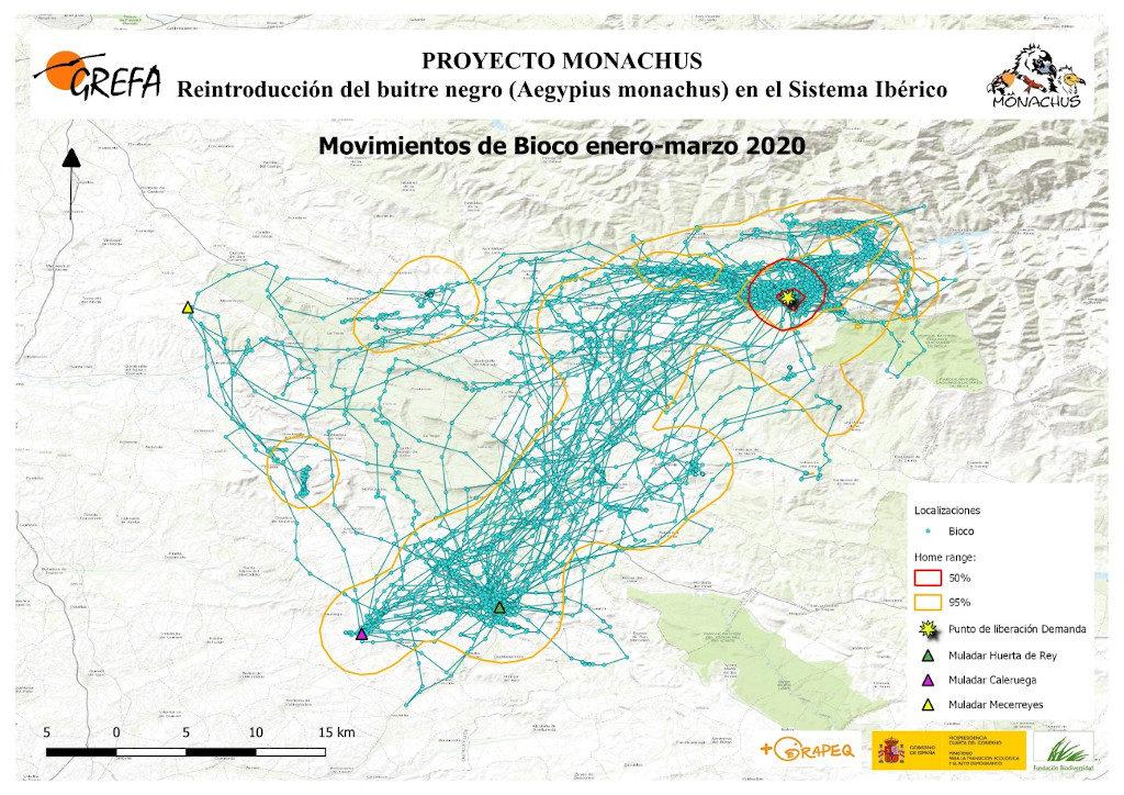 Mapa 9. Movimientos de Bioco durante los meses de enero-marzo.