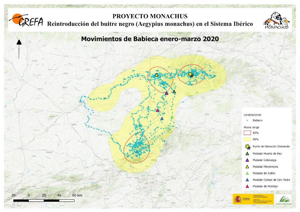 Mapa 15. Movimientos de Babieca durante los meses de enero-marzo.
