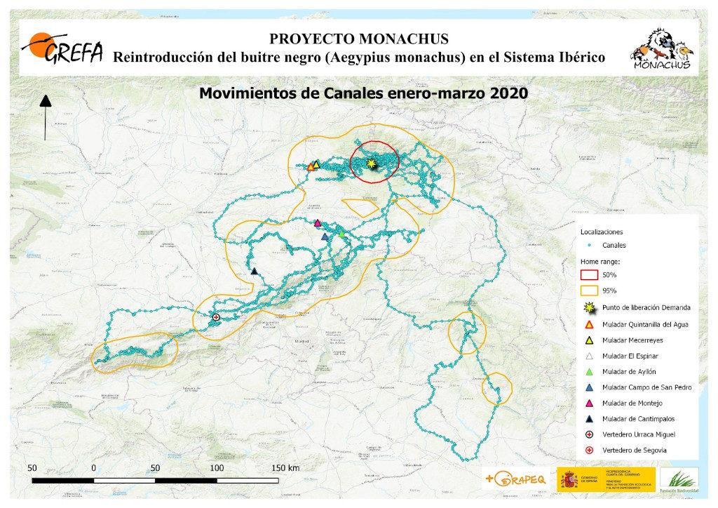 Mapa 18. Movimientos de Canales durante los meses de enero-marzo.