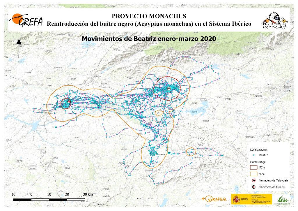 Mapa 22. Movimientos de Beatriz durante los meses de enero-marzo.