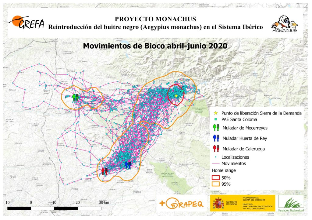 Mapa 10. Movimientos de Bioco durante abril-junio.