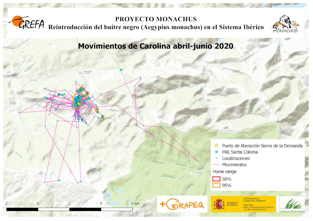 Mapa 13. Movimientos de Carolina durante abril-junio.