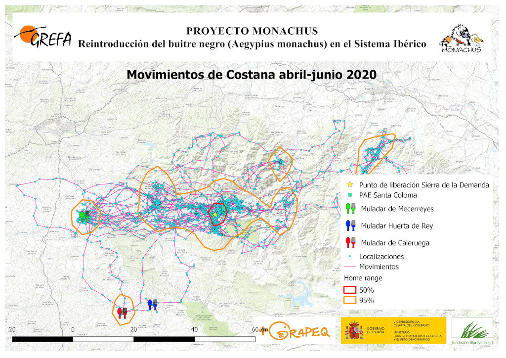 Mapa 17. Movimientos de Costana durante abril-junio.