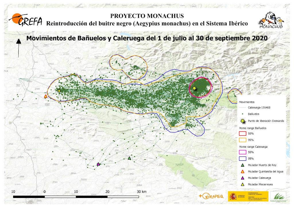 Mapa 7. Movimientos de Bañuelos y Caleruega durante los meses de julio-septiembre