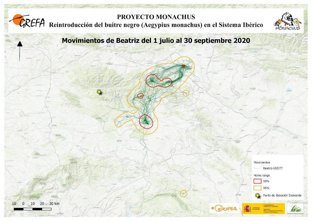 Mapa 19. Movimientos de Beatriz durante los meses de julio-septiembre.